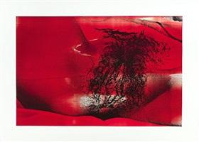 photo drawing brix = 69 [red] by makoto saito